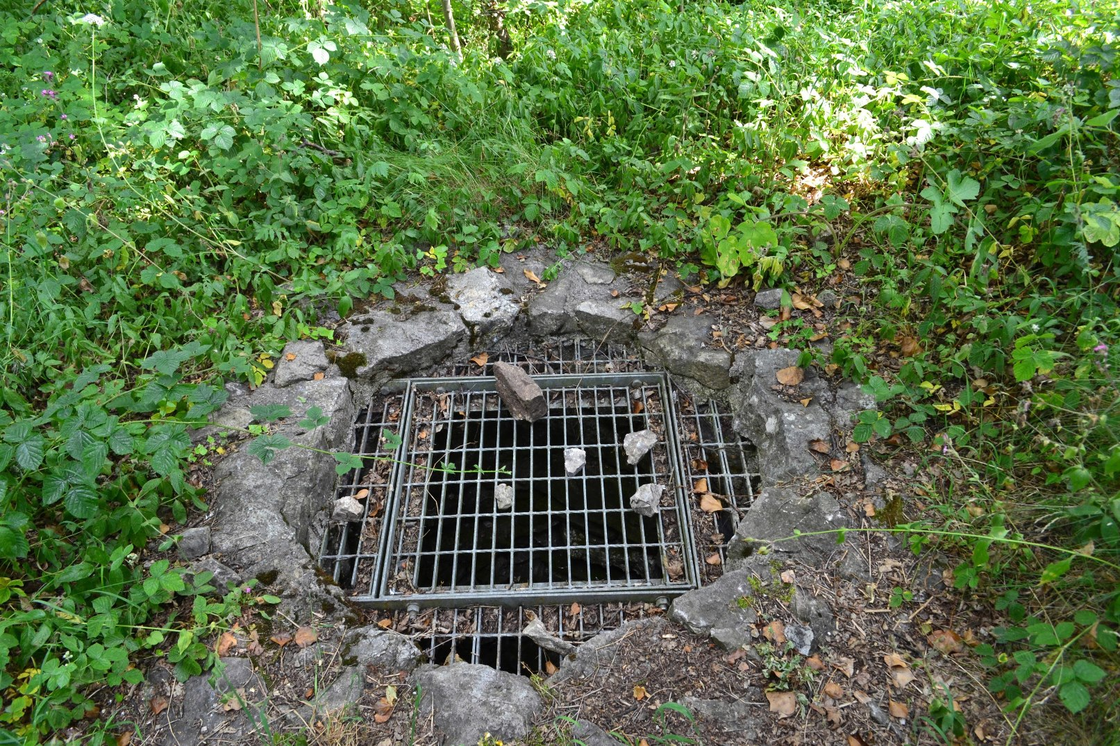 Mine entry shaft