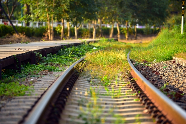 Railway ecological impact assessment