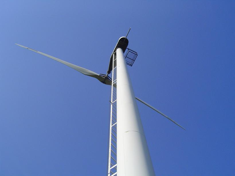 Reliable roller bearings for wind turbine towers